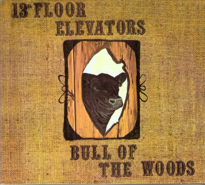 13th floor elevators bull of the woods for 13th floor elevators electric jug