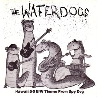 Waterdogs - Hawaii 5-0