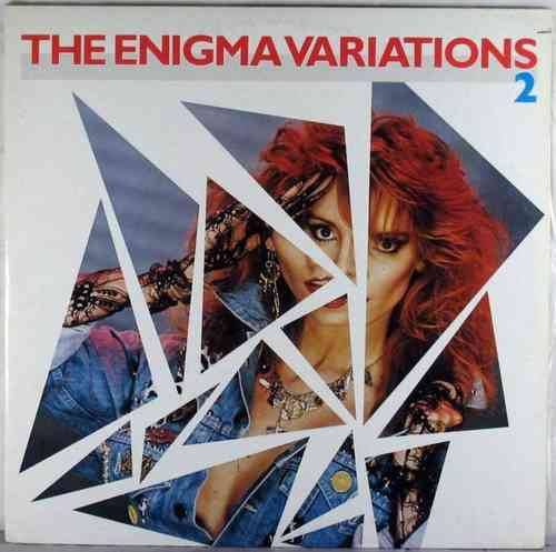 V.A. - The Enigma Variations 2 (2LP)